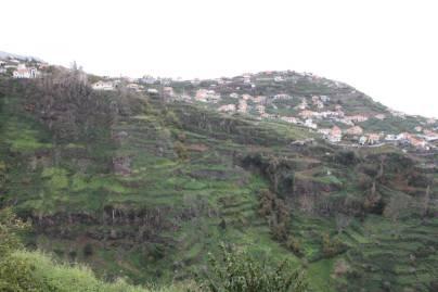 Terrassen im steilen Talhang